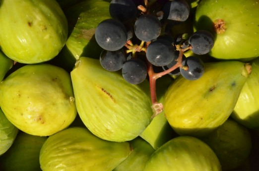 Figs and grapes!