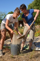 sifting sand for mortar